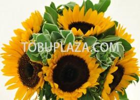H07 太陽花花球