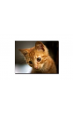 CO_G01-01 油畫連松木製内框 | TOBUPLAZA